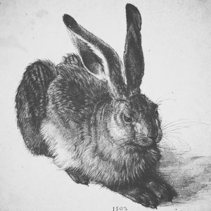 happyeaster. | dürer🔝 #pure #aesthetic #simple #dürer #dürerhase #rabbit #albertina #drawing #art #artwork ...