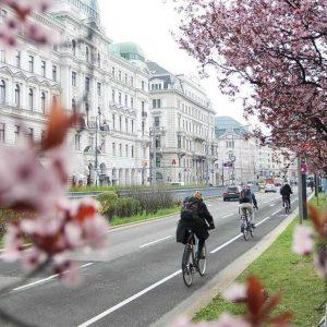 Die Radverkehrsanlagen in Wien sind insgesamt ca. 1.379 Kilometer lang. Wo radelt ihr ...