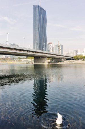 In Wien gibt es 23.602 Kilometer Verkehrsflächen, die meisten davon in der Donaustadt mit 3.472. Genutzt werden...