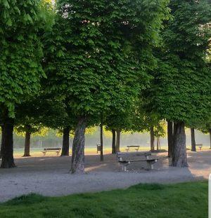 VIENNA/ Augarten #goodmorningvienna _________________________ #augarten #baroquegarden #naturinthecity #vienna_city #garden #park #1020wien #polditown #picoftheday ...