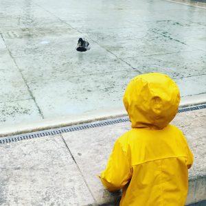 Regen, Regen, Regen. #wien #mqw #ente #entegutallesgut