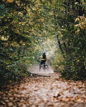 🚵♀️Mountainbike-Fans aufgepasst!🚵♂️ Geführte E-Mountainbiketouren im wunderschönen Biosphärenpark Wienerwald. Nächster Termin: diesen Samstag, 9:30 ...