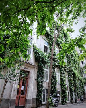 Hidden courtyard Gumpendorferstrasse 7th district . . . #urbanexplorer #visualambassador #vienna_austria #viennagoforit #igersvienna #onlinevienna #topviennaphoto #viennastravel #wienstagram...