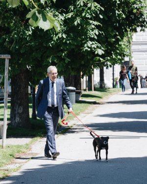 🐾 Kurze Pause zwischendurch gemeinsam mit Juli. ________ #sonne #pause #bestefreunde #juli #firstdog #bundespräsident #vanderbellen