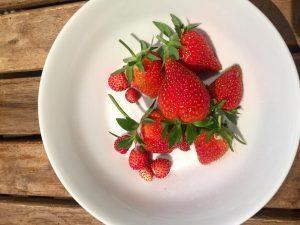 First 🍓🍓🍓🍓❗️ . . . . #strawberry #home #red #love #urban #farming #gardening ...