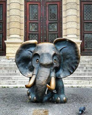 Museums Platz. . . . . #elephant #osterreich #vienna #austria #europe #europa #cityview #museumsquartier #afrika #sculpture #holidays...