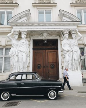 Looking back to #asundaycarpic in Vienna last year.