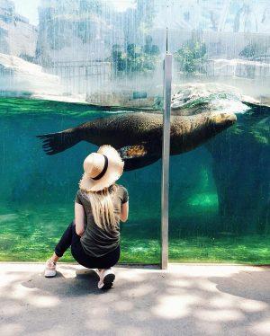 😍 ____________________________________ #ausrtia #zoo #zooshönbrunnvienna #shonbrunn #shonbrunnpalace #shonbrunnzoo #shönbrunn #austria🇦🇹 #austria_memories #austriavacations #austria_pictures ...