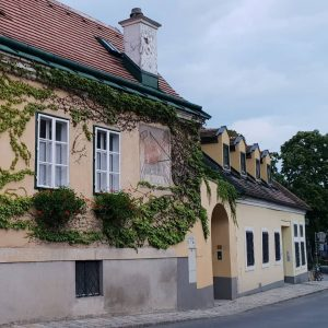VIENNA/ Grinzing ________________ #viennanow #grinzingvienna #grinzing #wiennurduallein #wienistanders #wienmalanders #heuriger #wonderlustvienna #vienna_city #viennawalks #igerswien #igersvienna #igersaustria #vienna_austria...