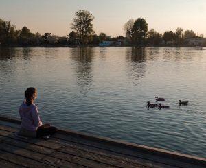 #travel #travelphoto #austria #österreich #wien #vienna #altedonau #olddanube #mood #dusk #meditation #chill #relax ...