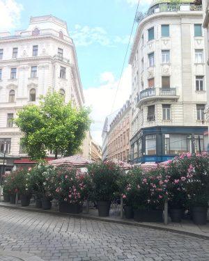 Величний, прекрасний, мальовничий, комфортний, прогресивний... Ще безліч епітетів можна підібрати, щоб охарактеризувати столицю Австрії! ♥️
