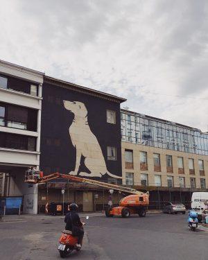 @wienmuseum ist auf den Hund gekommen #vienna #wien #kunstambau #art #museum #vsco #vscocam #igersvienna #igersaustria #takeover #dog
