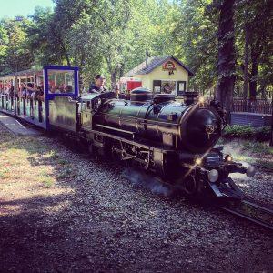 Honey, I shrunk the train #liliputbahn #Prater #praterallee #outdoor #ontour #travel #naturephotography #vienna #trip #loveit #ilovevienna #sightseeing