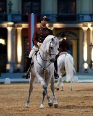 Chief Rider Hausberger about the half pass: . . What will the half-pass do for your horse...