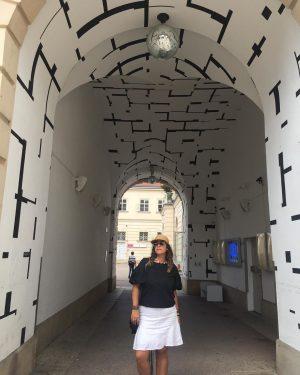 Viena e toda sua grandiosidade! #historia #sissi #albertina #mozart #bethoven #froid #cultura #musica #megalomaniaco