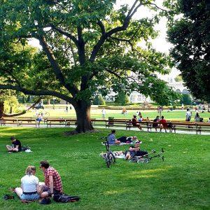 Wusstet ihr, dass in Wien 53% für Grünflächen aller Art reserviert sind? Tendenz ...