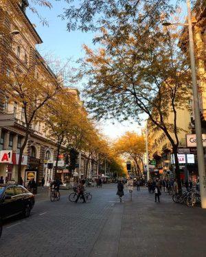Die Mariahilfer Straße ist mit 3,7 Kilometern die größte Einkaufsstraßen Wiens. Unterbrochen wird ...