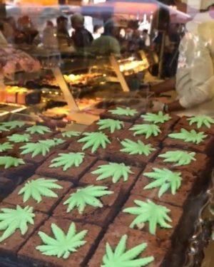 Zur Neuauflage der Hanf Brownies werden auf der Mahü Kostproben verteilt.. ziemlich lange Schlange. Mehr dazu in...