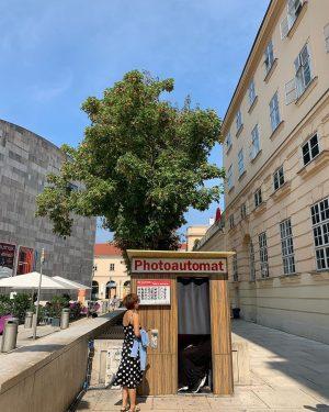 ✈️🇦🇹 #2019 #8월 #오스트리아 #Austria #레오폴드미술관 #Leopoldmuseum #여행에미치다_오스트리아 #여행에미치다_비엔나 4컷에 3유로💵 포샵따위 할수없는 그런 카메라🤣🤣