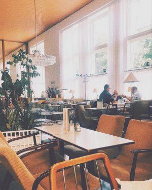 Coffee time ☕️ 😺 . . . . . . . . #travelholic ...
