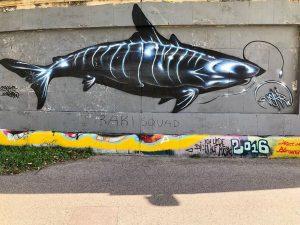 #vienna #streetart #murals #viennamurals #photowalk #sundaywalk #iphonex #iphoneonly