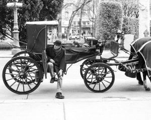 Wiener Fiaker 📸©️ @chchcc & Leica M Monochrom, Summicron-M 1:2/50 #leica #leicacameraaustria #vienna #streetphotography #leicam #monochrome #summicron...