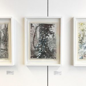 Last day to see the presentation of my new work SHIFTING ROOTS at PARALLEL VIENNA art fair...