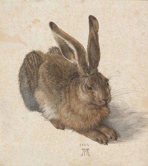 Guess which exhibition opens tonight @albertinamuseum 🐇 • The ALBERTINA Museum holds the world's most important collection...