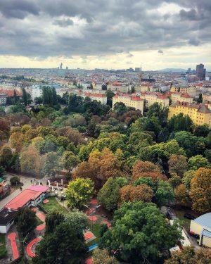 Fall in Vienna, Austria 🍁🍂 . . . . #vienna #viennaaustria #vienna_go #vienna_city #austria #europe #europetravel #europe_ig...