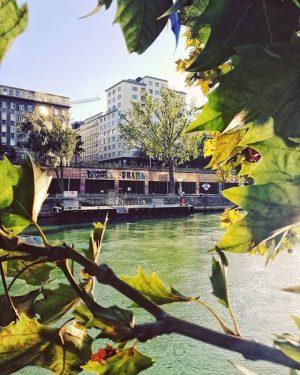 Der Donaukanal streift sieben Bezirke und ist auch im Herbst auf jeden Fall ...
