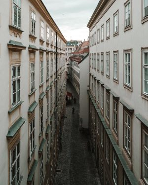 I took this picture from Mozart house Vienna's front window. It was a very special moment for...