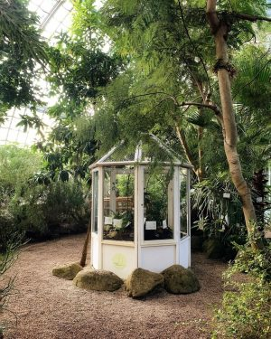 A small greenhouse inside the Palmenhaus looks cosy 💚 . . . #urbanjunglebloggers #indoorplants #garden_styles #gardenlove #식물#gardeninspiration...