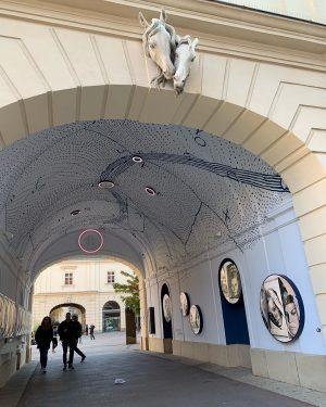 #MQ #museumsquartier #art #kunst