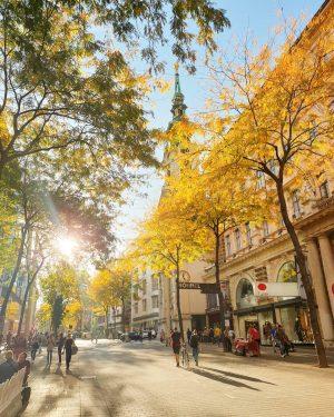 Während wir in Wien die (jetzt aber wohl wirklich) letzten warmen Tage des ...