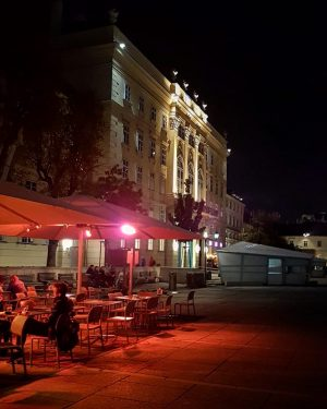 @mqwien by night ✨ Definitely a great place to go to at every time of the day😊