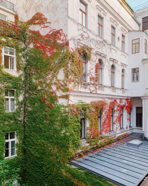 autunno a Vienna 🍂 #Vienna #autumnvibes #allredeverything #airbnb