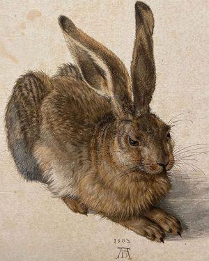 Young Hare, Albrecht Dürer, 1502 #albrechtdurer #dürer #albrechtdürer #dürerchallenge #albertinamuseum #wien #vienna #wiedeń #vienna_city #vienna_go #bringarttolife #artwork...