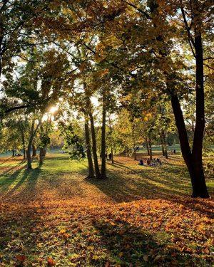 Wunderschönen guten Morgen am Sonntag ihr Lieben. 😘 Wir hoffen ihr genießt dieses traumhafte Herbstwetter heute noch...