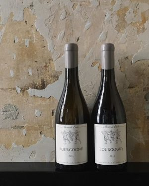 🍃 Benoît Ente is the younger brother of Arnaud Ente. Benoît began his career by growing fruit...