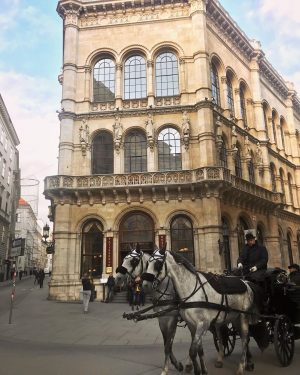 Petit séjour romantique et féerique à Vienne ✨❄️ #vacances #chocolatviennois Café Central Wien