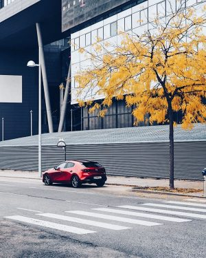 Soul Red Since the 1960's R360 Coupe, a micro car sold in Japan, the color red has...