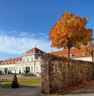 Lower Belvedere Palace a few metres from my home. A beautiful autumnal day, ...