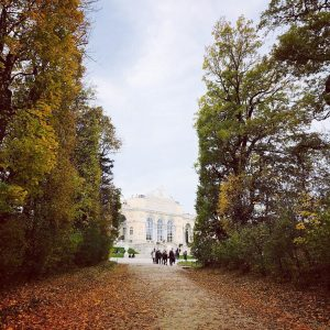 Spectacular 2nd day in Vienna 🍂Visited the Habsburg's Schonbrunn Palace and wandered through ...