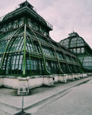 Architecture. 📸 . . . . . . . #palmenhaus#schönbrunn#schlossschönbrunn#vienna#wien#wienliebe#architecture#architecturelovers#streetstyle#streetphotography#moodygrams#agameoftones#autumn#perspective#throwback#travelling#travelgram#liveauthentic#livefolk#liveoutdoors#greatoutdoors#topviennaphoto#igersvienna#exploremore#adventureculture#instagood#instadaily#photography#photooftheday#wanderlust