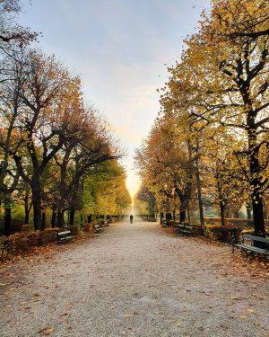 A walk in Schönbrun in the morning Schönbrunn