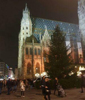 VIENNA/ Weihnachtsmarkt am Stephansplatz ____________________ #goodeveningvienna #vienna_city #viennanow #weihnachtsmarkt #christmastime #igersvienna #igerswien #vienna_go #vienna_austria #viennadaily #365austria #wonderlustvienna...