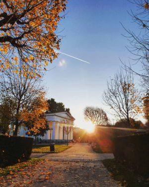 Evening walk through the Volksgarten. . . . #igersvienna #wienstagram #stadtwien #viennatouristboard #volksgarten #abendlicht #sonnenuntergang #herbstfarben #moody...