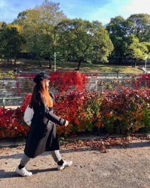😍#autumninvienna 🍁🍃🍂🌿 #strollingaround #stadtparkwien #wienerstadtpark #autumnvibes🍁 #herbst🍁 #fall🍁 #natureinthecity #wienfluss #wien🇦🇹 #wienliebe #wienstagram #meinwien #wien_love #vienna🇦🇹 #ilovevienna...