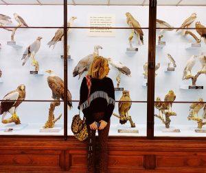 Hangin with my hôk friends. #vienna NhM Naturhistorisches Museum Wien