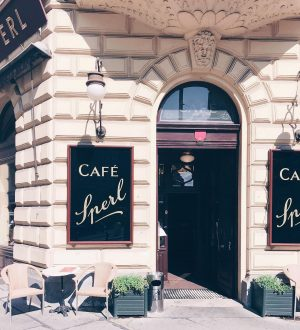 Not study related but this cafe in Vienna was so nice Café Sperl